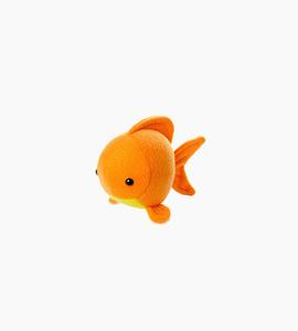 Janie xy   goldfish